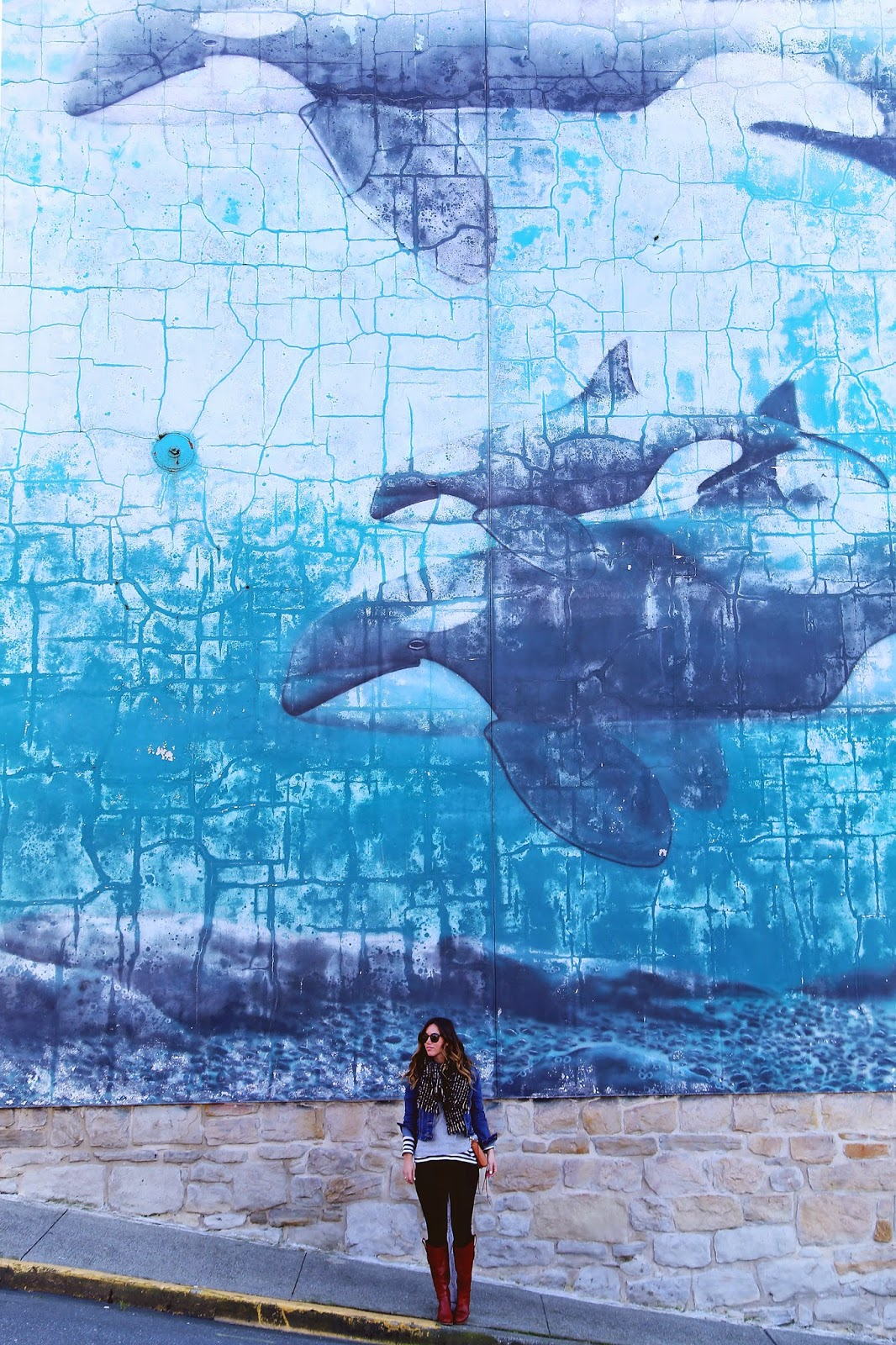 whale-wall-victoria-bc