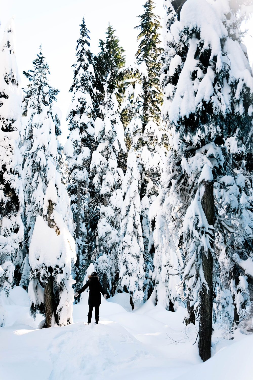 Things to do in Vancouver this winter 2016: Cypress Mountain snowshoeing, Enchant Light Show, Van Dusen Festival of Lights and Lynn Valley Lynn Canyon Suspension Bridge