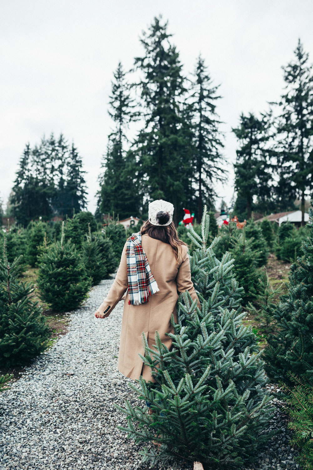 Frostys christmas tree farm by To Vogue or Bust