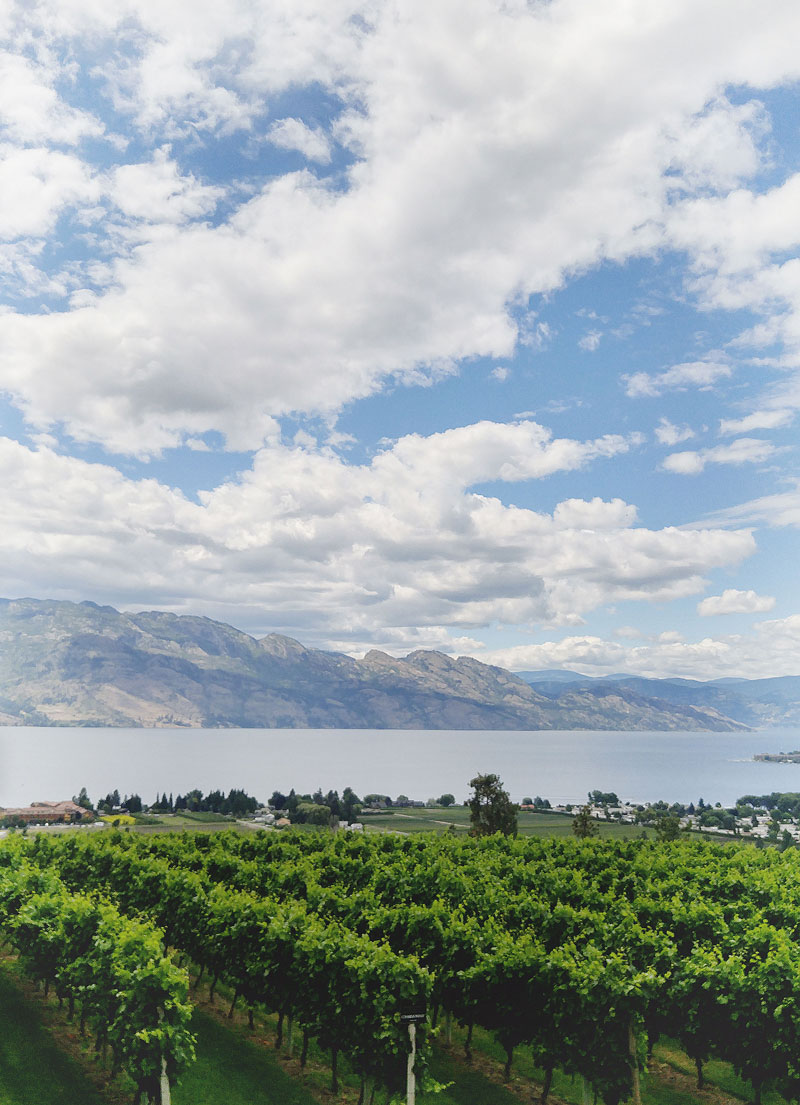 Best wineries in the Okanagan