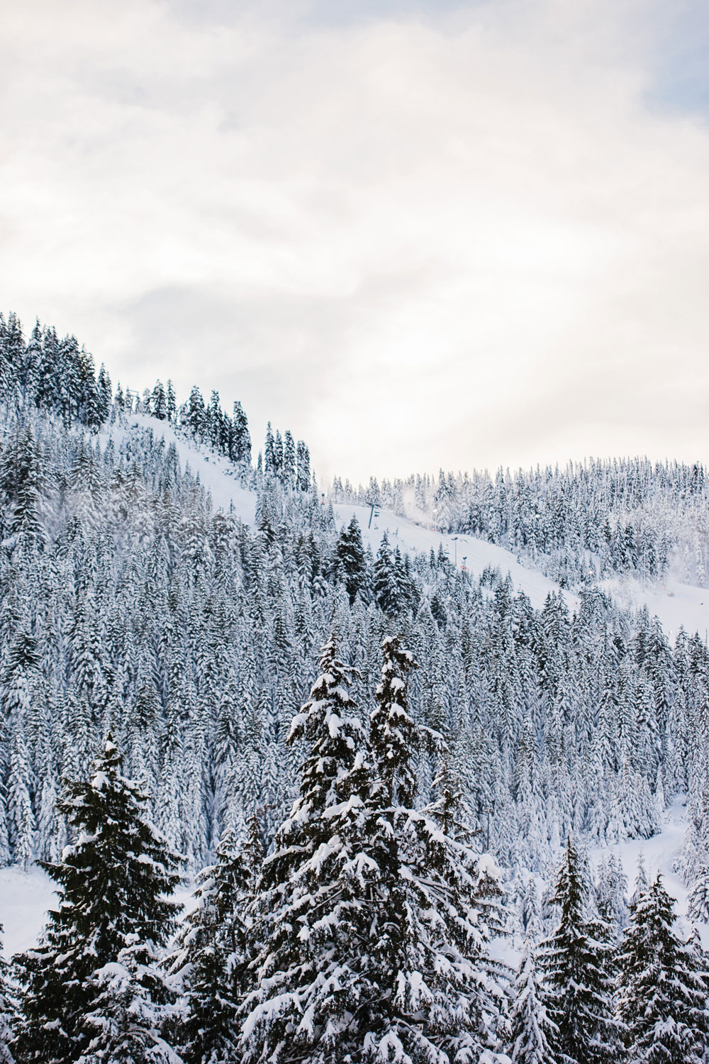 What to do in Vancouver in the winter: Cypress Mountain in the snow