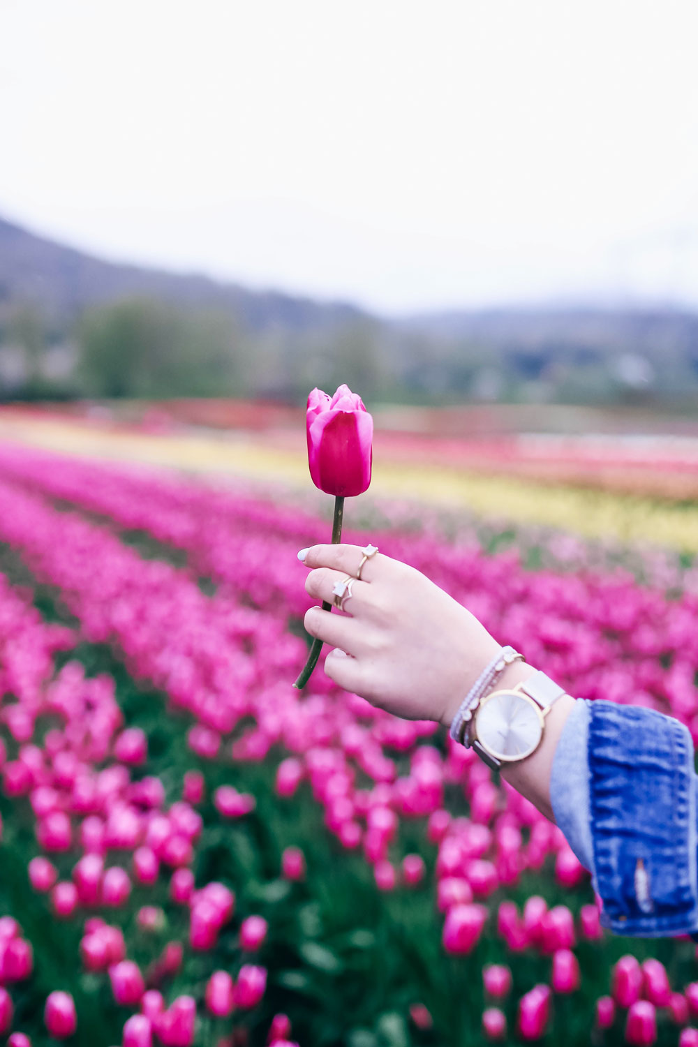 How to transition into summer style, how to wear a romper, how to wear a denim jacket, romper spring style, in aritzia straw hat, cluse watch, lovers friends romper, revolve romper, at abbotsford tulip festival by To Vogue or Bust