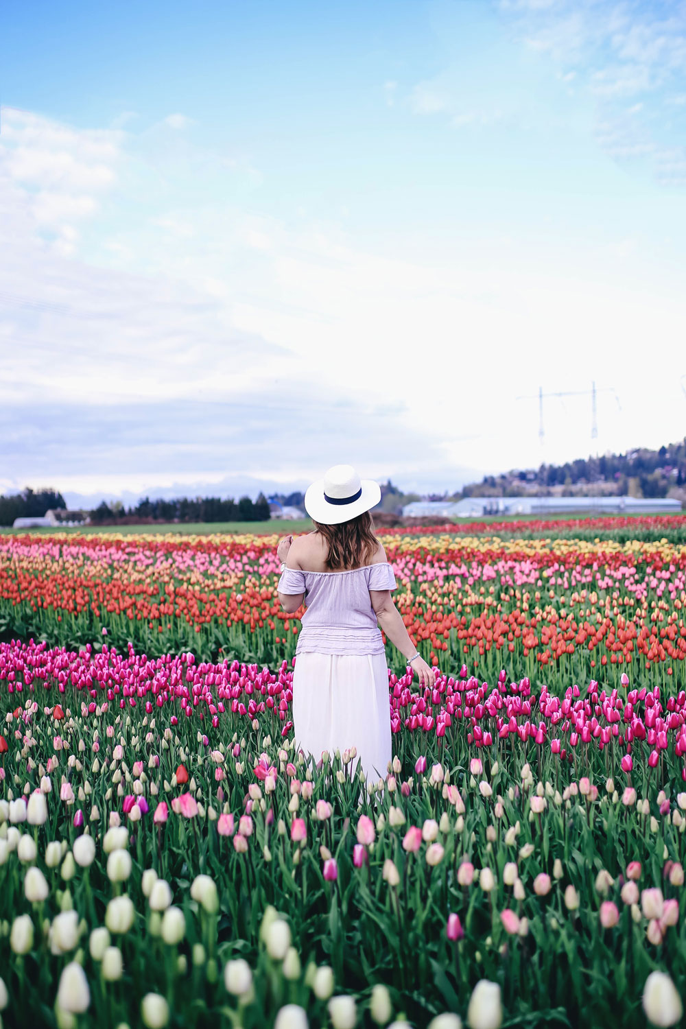 Tulip fields in Vancouver by To Vogue or Bust in an Aritzia silk skirt Aritzia off the shoulder top Joe Fresh panama hat