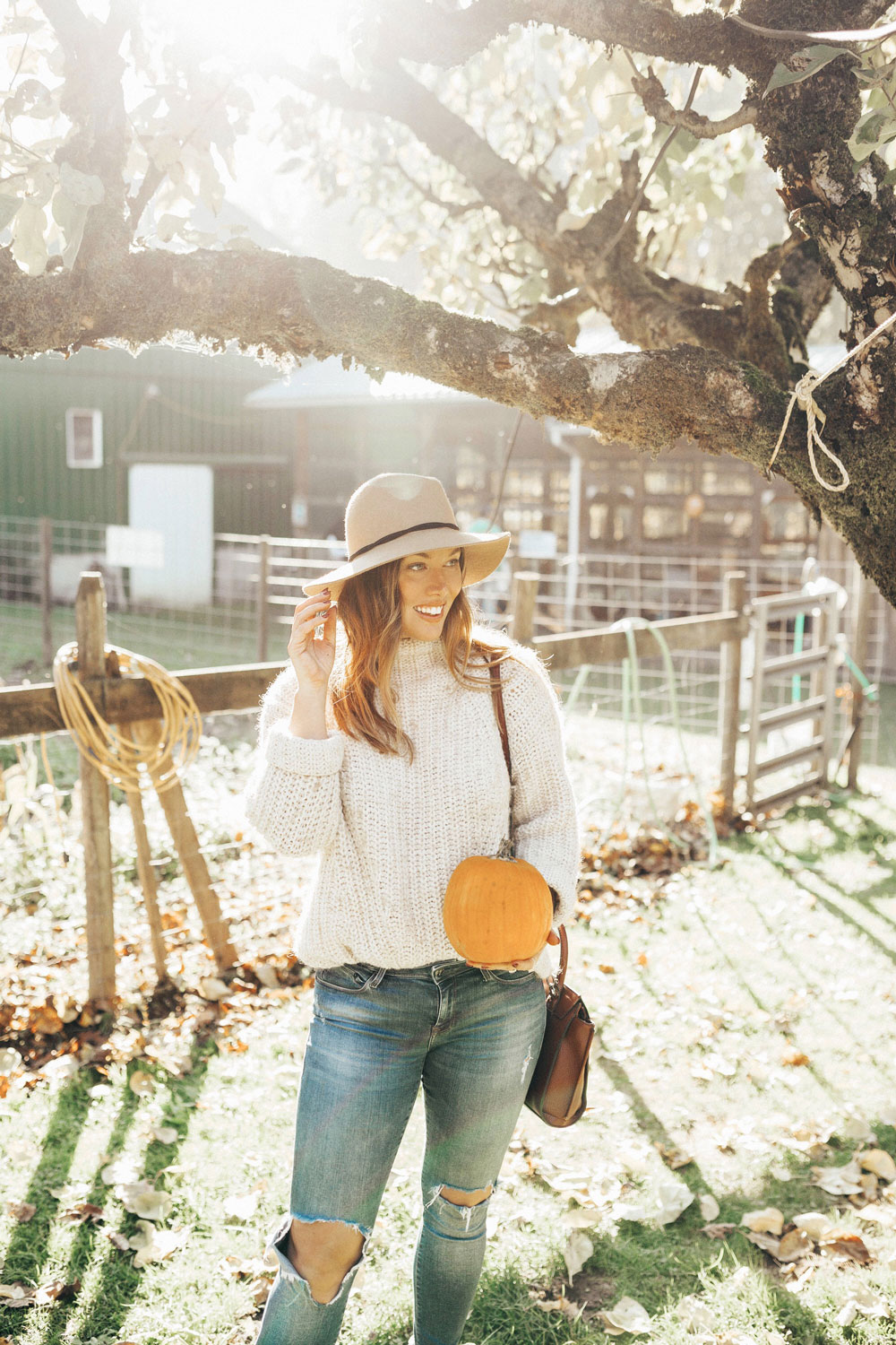 What to do in vancouver aldor acres pumpkin patch by To Vogue or Bust