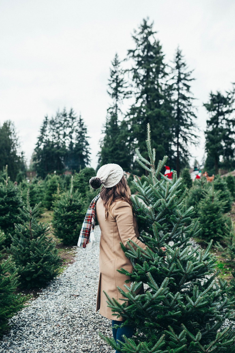 Best christmas tree farms vancouver by To Vogue or Bust