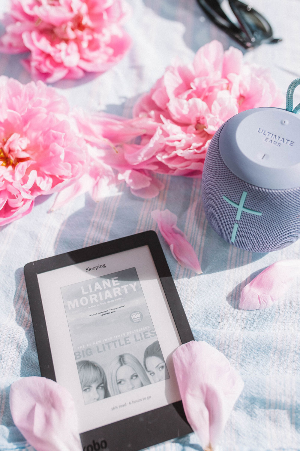 best e readers by To Vogue or Bust