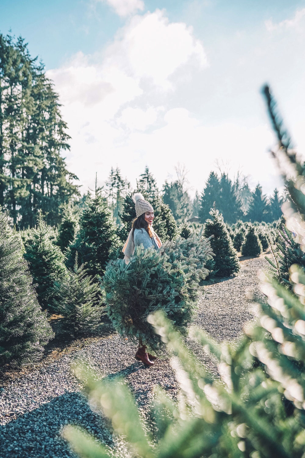 Christmas tree farms Vancouver