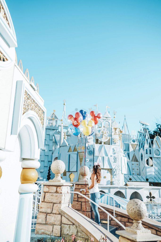 Fun rides Disneyland