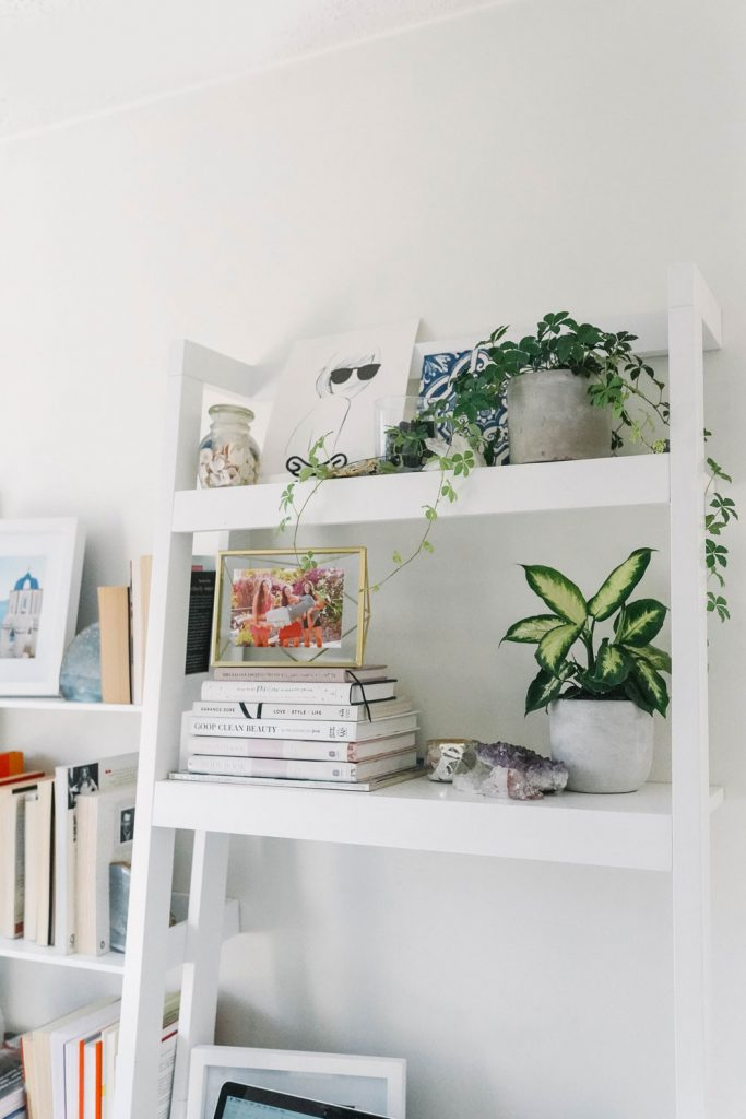 Houseplants tips