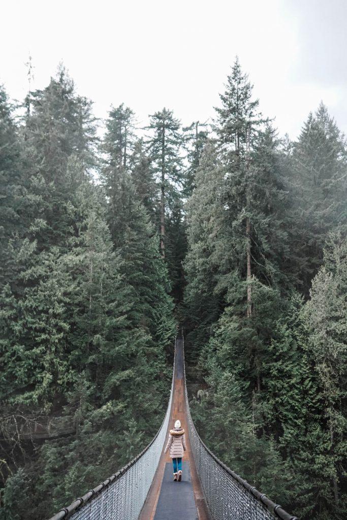 Canyon Suspension Bridge Vancouver