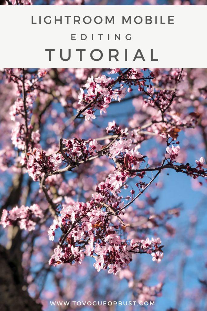 Lightroom mobile editing tutorial