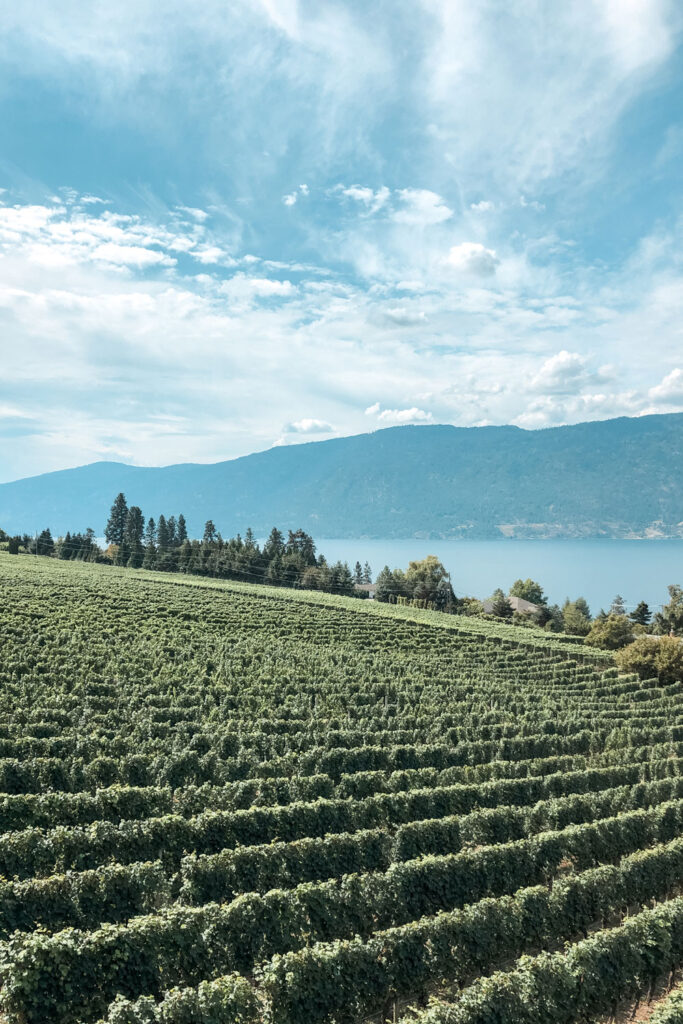 The Okanagan travel guide